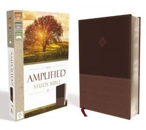 AMPLIFIED-STUDY-BIBLE-BROWN-LEATHERSOFT